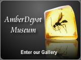 Amber Depot Museum
