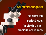 Amber Depot offers a wide selection of high quality microscopes for viewing your precious fossil amber collections.