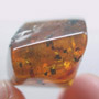 Rare Ant Pupa In Dominican Amber
